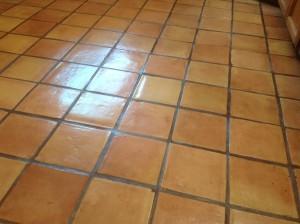 restored antique saltillo tiles