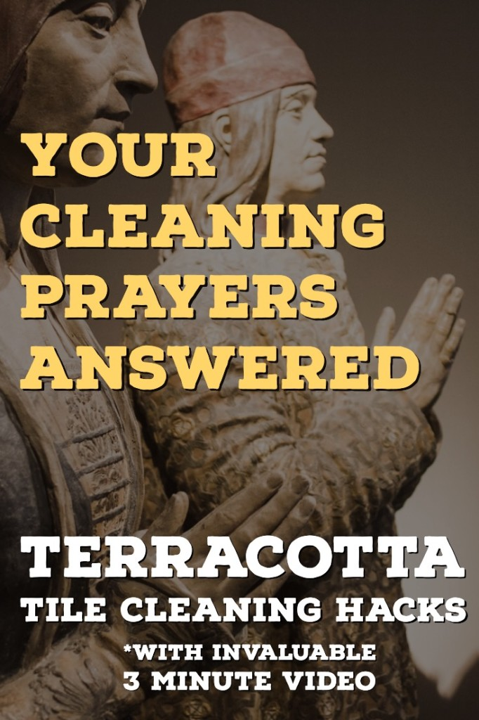 Terracotta Cleaning