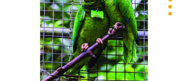 Charla: Animales Extintos de Puerto Rico