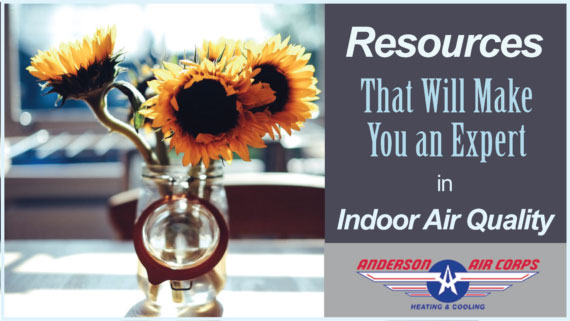 4 Resources That Will Make You an Expert in Indoor Air Quality