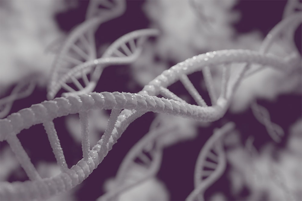 Gene Editing: How long does it take for Crispr to work?