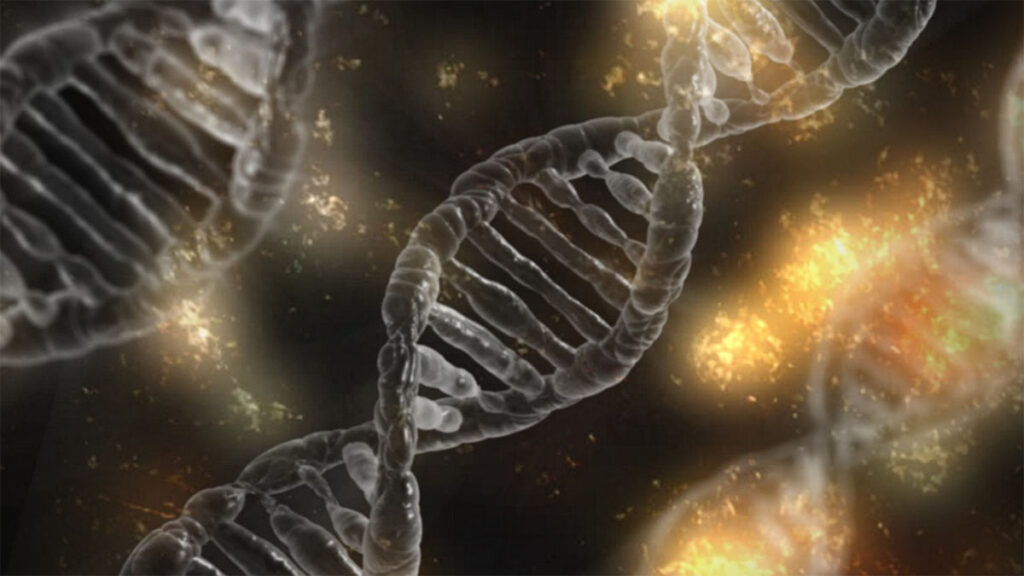 When Did Humans First Use CRISPR?