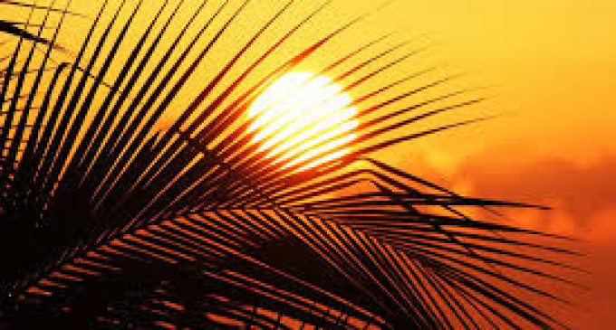 Is Sun Exposure Linked to a Longer Life?