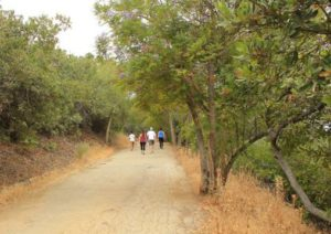 Fryman Canyon Trail minutes from Sherman Oaks