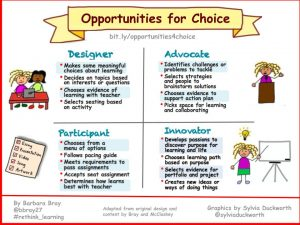 Opportunities for Choice - (Bray) 2018