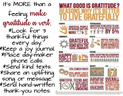 What Gratitude Means