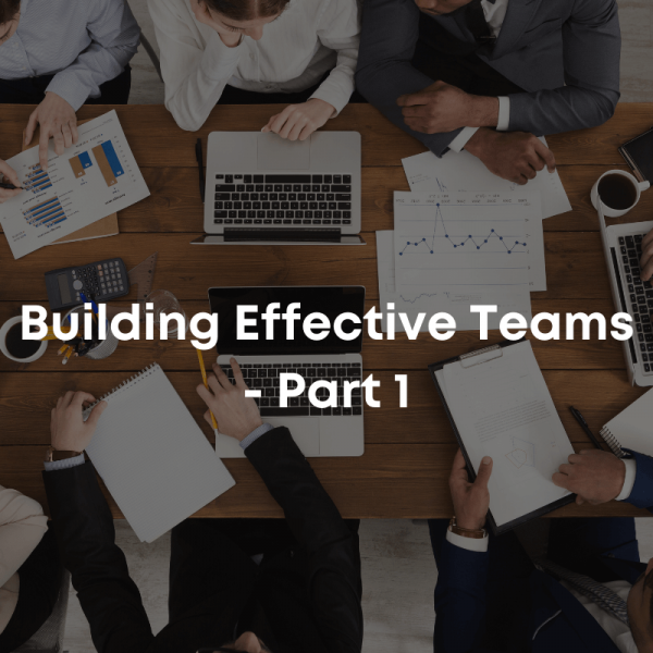 Building Effective Teams course