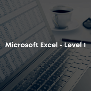 microsoft excel level 1 course