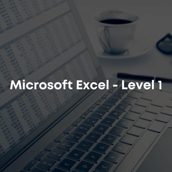 microsoft excel level 1 course
