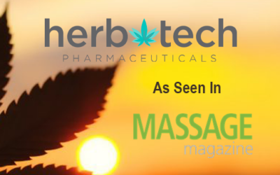 7 THINGS YOU SHOULD LOOK FOR IN A CBD MASSAGE PRODUCT