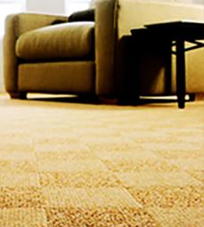 Carpetland-USA-Carpet