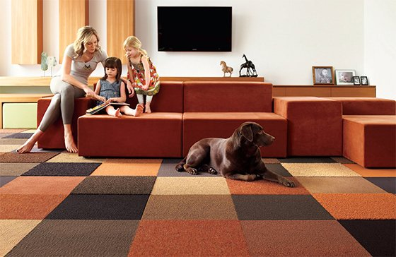 Carpetland-USA-family-carpet-home