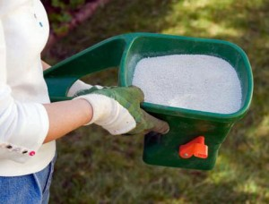 Magnolia Woods residents can borrow hand spreaders from MWCA to spread their fire ant sterilant