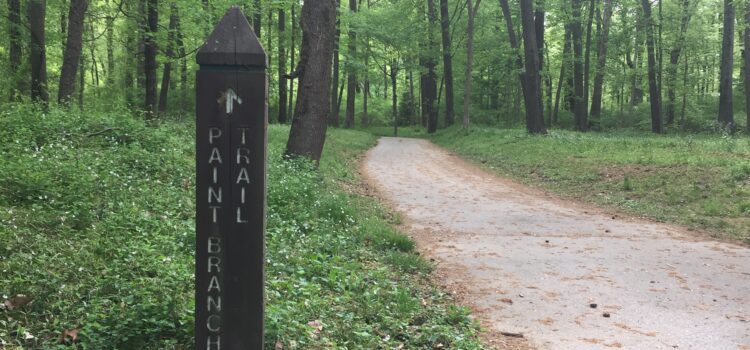 Biking Trails of College Park: Just in Time for Earth Month!