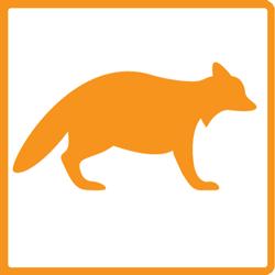 mmr-icons-orange-raccoon250