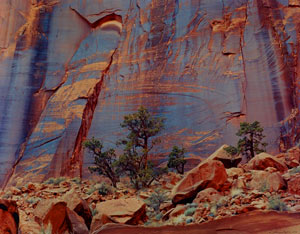 "Hyde's Wall, East Moody Canyon, Escalante Wilderness, now the Grand Staircase-Escalante National Monument, Utah, copyright 1968 by Philip Hyde. One of the most renowned photographs from Sierra Club Books. ""Hyde's Wall,"" originally titled ""Juniper, Wall, Escalante"" was first published in the Sierra Club book ""Slickrock: The Canyon Country of Southeast Utah"" with Edward Abbey. Search for ""Hyde's Wall"" on this blog for more about Edward Abbey, ""Hyde's Wall,"" ""Slickrock"" and how the wall originally became known as Hyde's Wall."