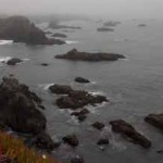 7. DHCA-SonCoast-91-12 Ice Plant, Mist, Duncan Cove State Beach-blog