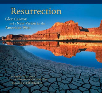 Resurrection Book Cover, Photograph copyright 2009 James Kay.