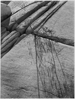 Glacial Granite, High Sierra Backcountry, Yosemite National Park, California, copyright 1950 Philip Hyde. A 1950 vintage silver gelatin 5X7 contact print and two other Philip Hyde photographs will participate in the Golden Decade Photography Exhibit at Mumms Napa, Main Gallery.