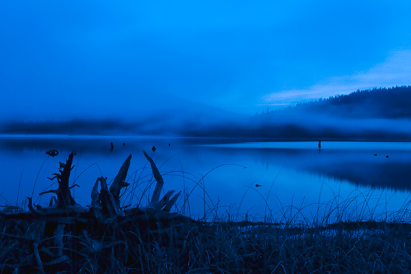 5. Twilight, Mist Patterns, Round Valley Lake, Greenville, California. This photograph I made near dark and lightened it some in Photoshop. Images made around the dusk hour often exhibit shades of translucent blue like this.