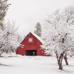 12-14-p DHCA-Gen15-185-16-Heart-K-Barn-and-Fruit-Trees-in-Fresh-Snow,-Genesee-Valley,-Winter