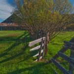 12-19 DHCA-SierraVly4-13-18-Broken-Gate,-Willow,-North-Barn,-Lemmon-Canyon-Ranch