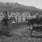 15. DHCA-IV31-139-18-Fritz-&-Andy-Roping,-MH-Branding,-Openshaw-Ranch,-Mt.-Hough,-Indian-Valley-BW