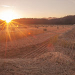 11. DHCA-IV33-184-19-Sunset,-Hay-Harvest,-Deadfall-Lane,-Indian-Head-in-Distance,-Indian-Valley,-Summer