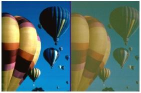 Catatact Graphic Balloon