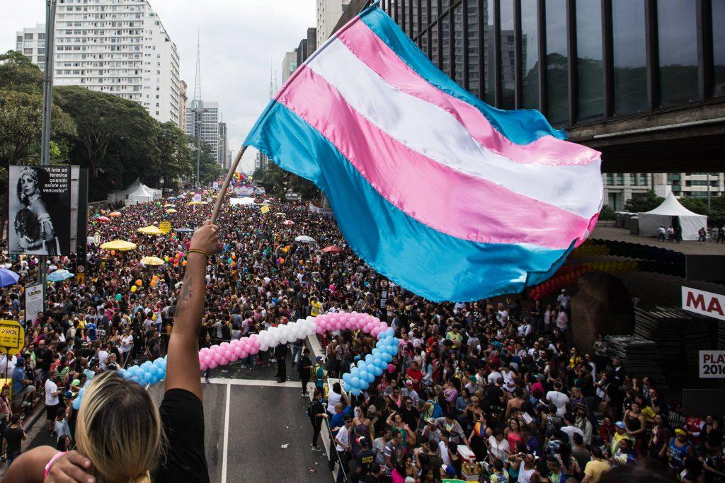 Bandeira do movimento Trans na Parada do Orgulho LGBT de SP de 2016. (Foto: Diego Padgurschi)