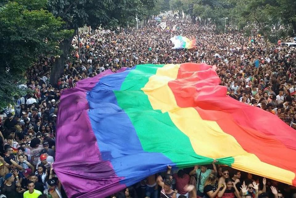 21ª Parada do Orgulho LGBT reúne mais de 150 mil pessoas na região central de Belo Horizonte. (Foto: Divulgação)