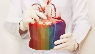 Atualmente, bancos de sangue rejeitam a doação de gays, bissexuais masculinos, mulheres trans e homens que fazem sexo com outros homens que tenham feito sexo nos 12 meses anteriores à coleta. (Foto: Reprodução)