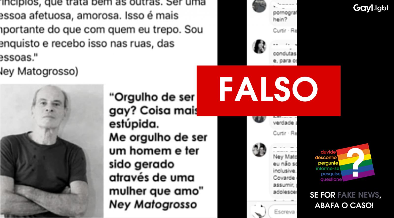 Posts falsos no Facebook atribuem declaração ao cantor Ney Matogrosso. (Foto: Reprodução/Arte Gay1)