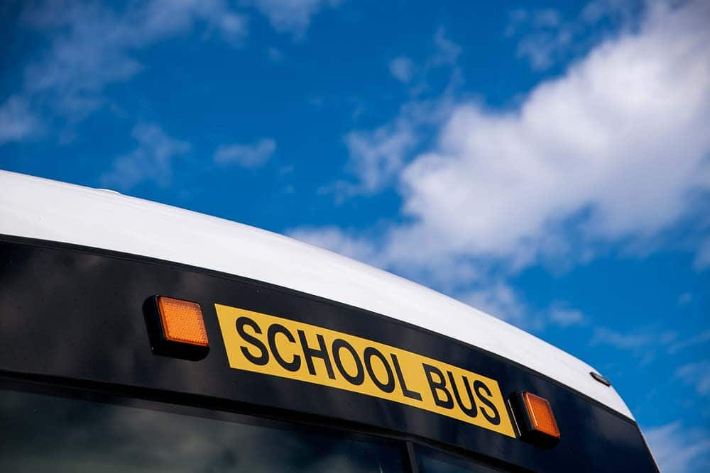 school bus letters on yellow background with blue sky from coolum coach
