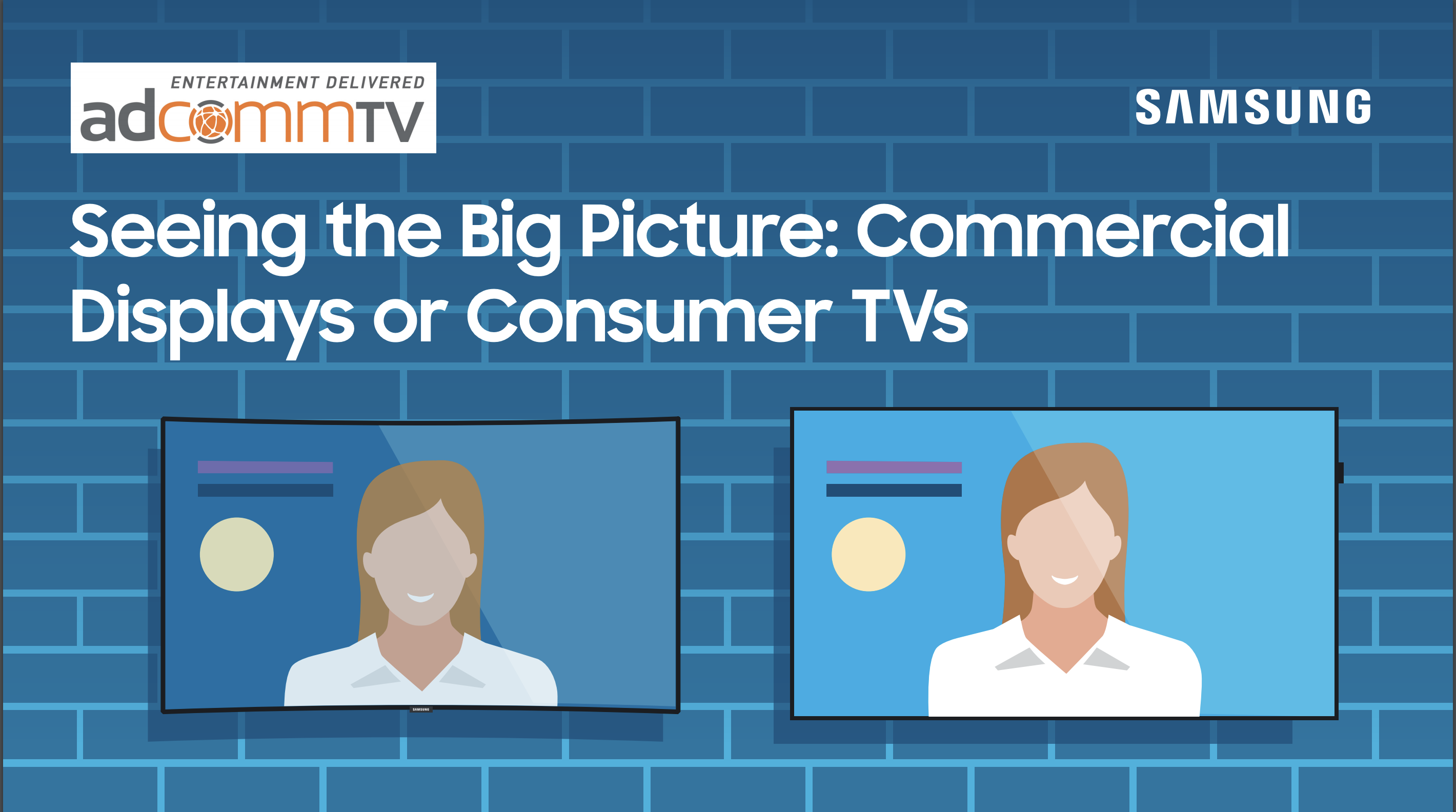 Seeing the Big Picture: Commerical Displays or Consumer TVs