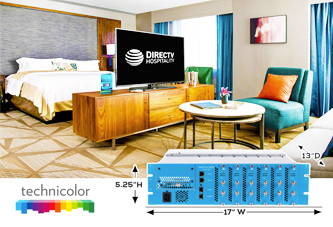 View of using DIRECTV for BUSINESS from room