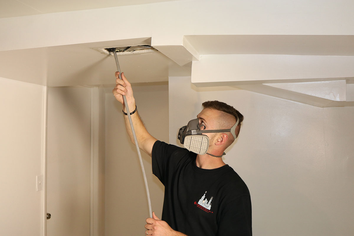 Duct Cleaning Pro