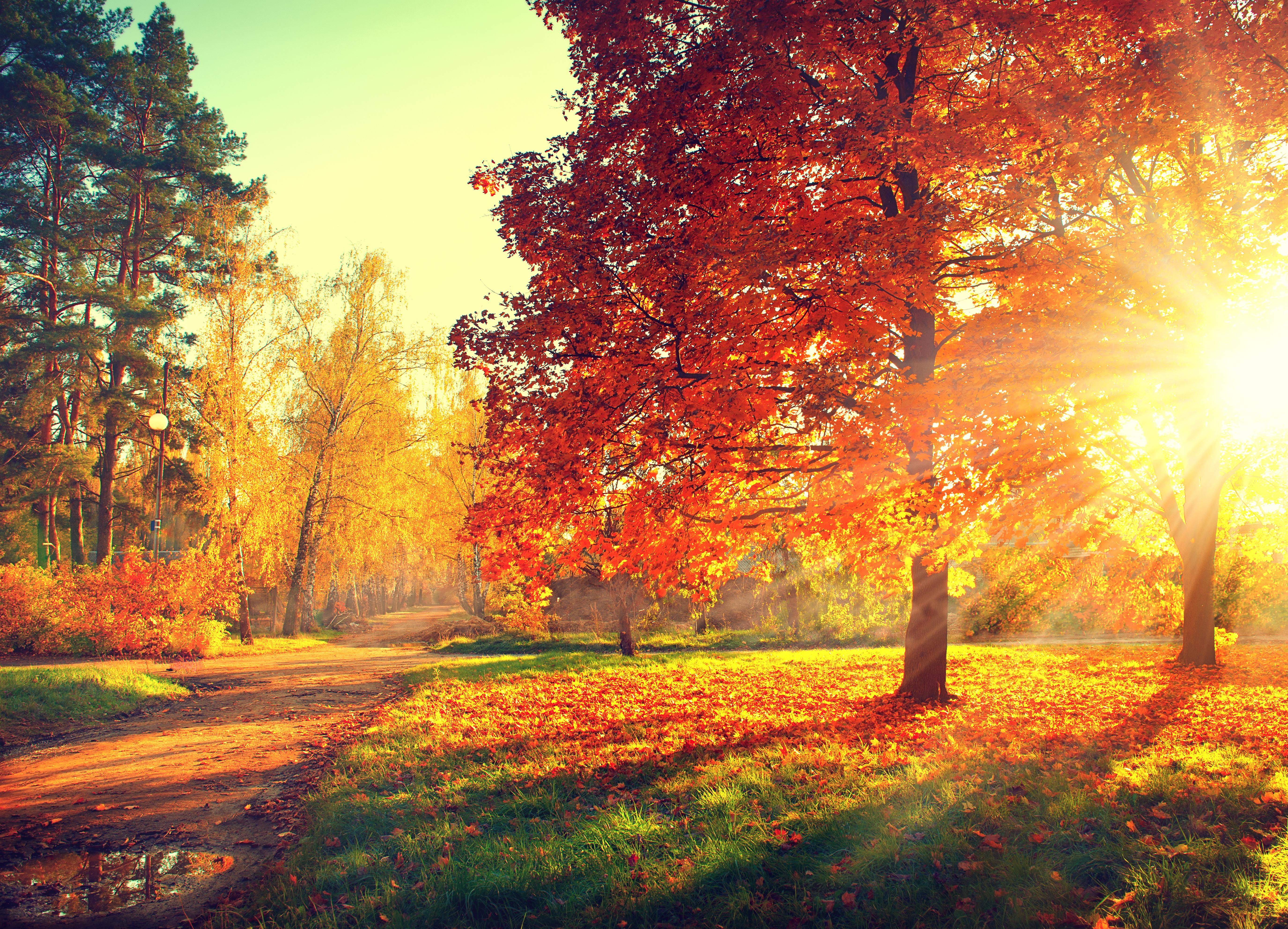 Ten Ways To Savor Autumn
