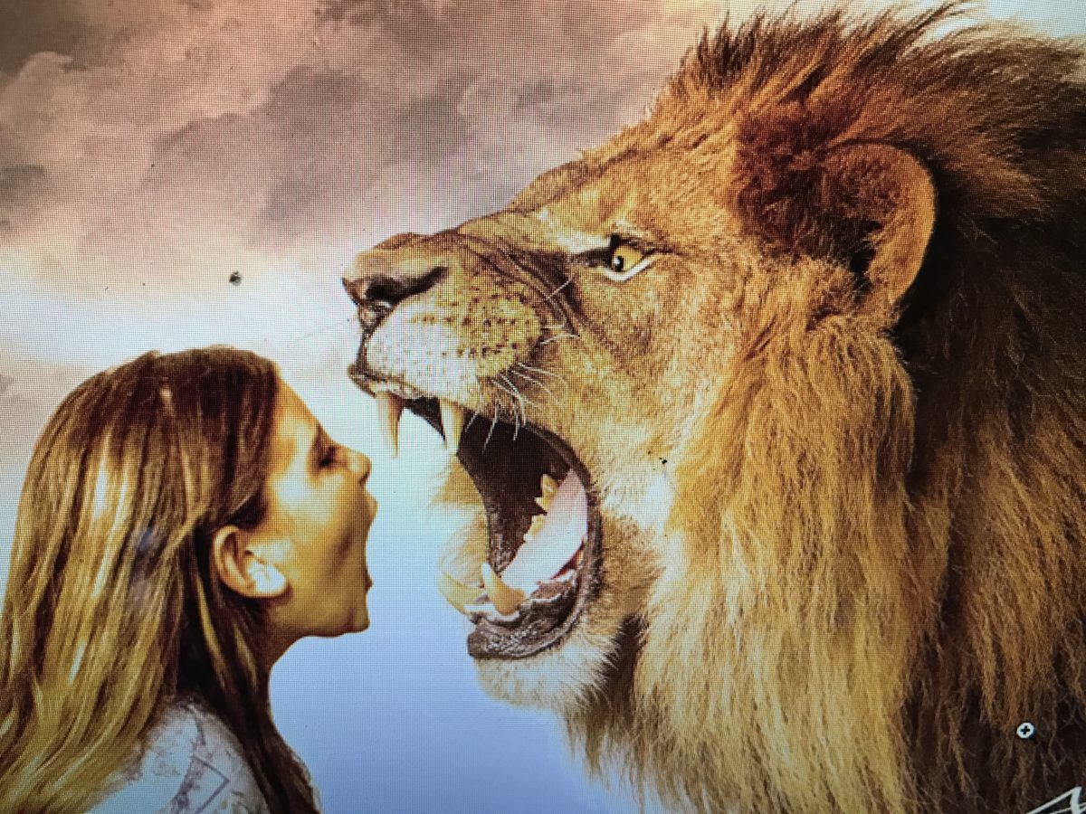 Run To The Roar Bold Like A Lion