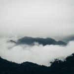 105_huajian_DSC_0156