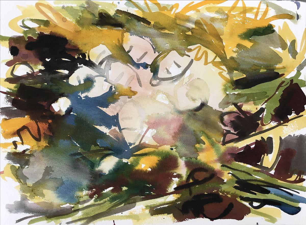 SNAIL-POOL-2019-ink-on-paper-11-x-15-inches-Elizabeth-Awalt