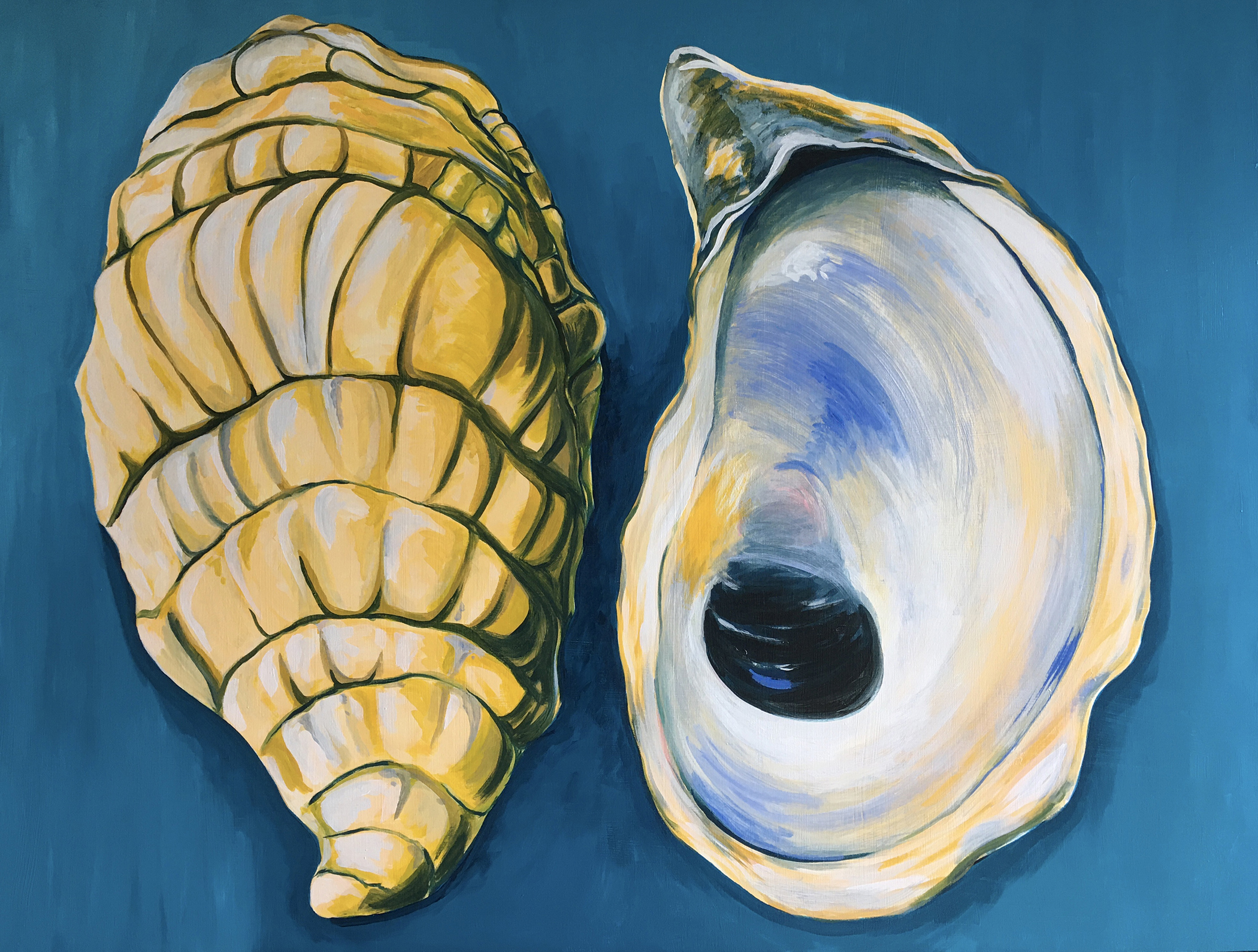 Jamie Spooner -Shell Shocked-acrylic on canvas 36x48in-2021