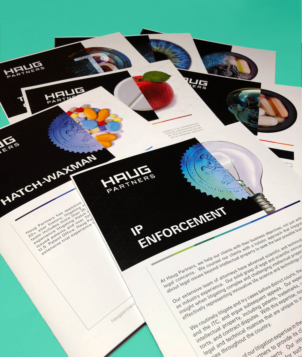 Haug Partners Print Collateral