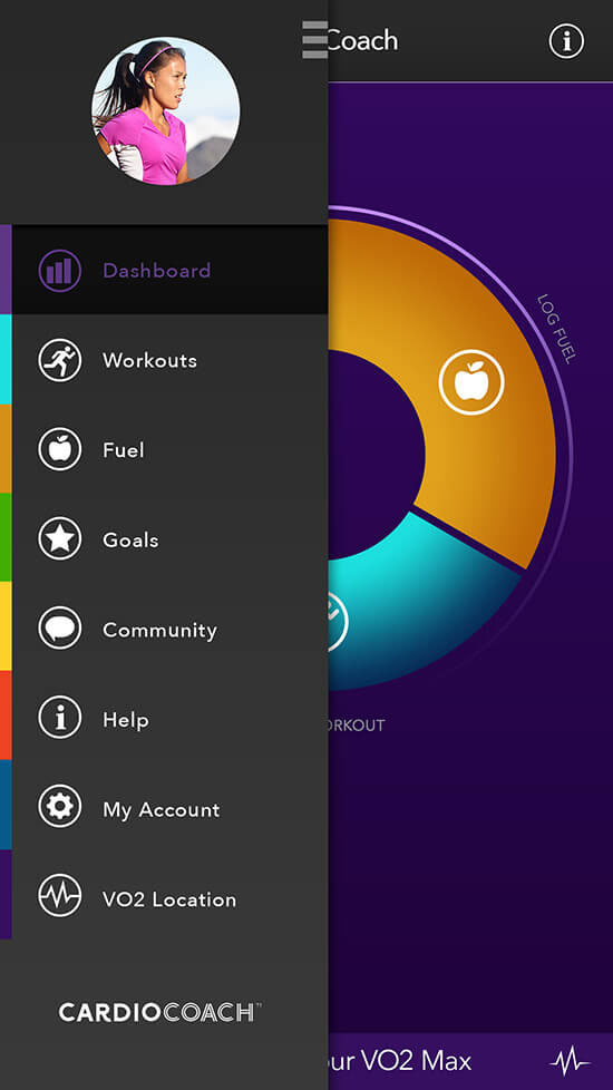 picture of VO2 Max app dashboard