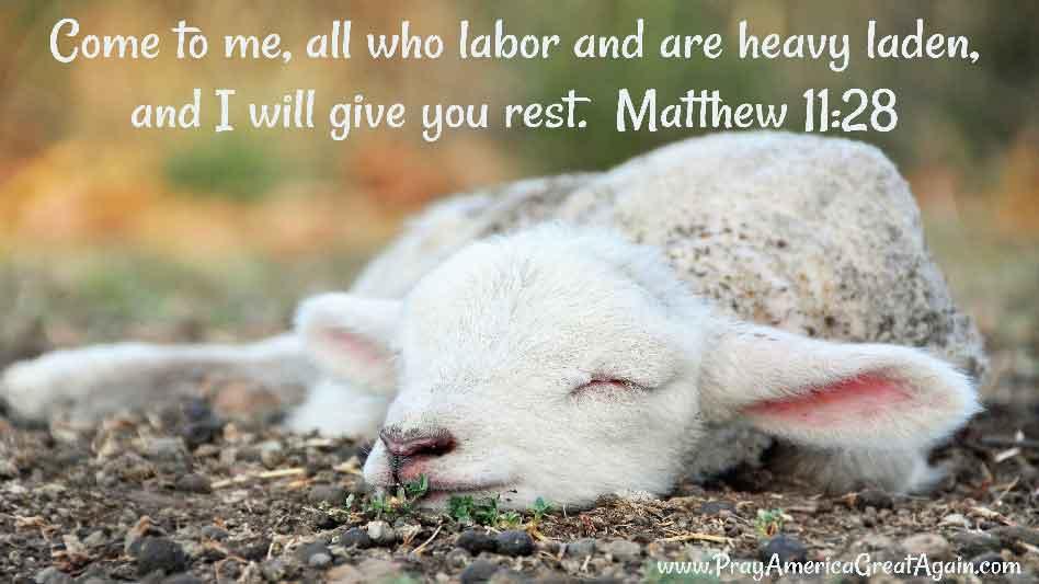 Pray America Great Again Matthew 11_28