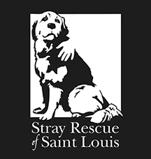 The Stray Rescue of St. Louis