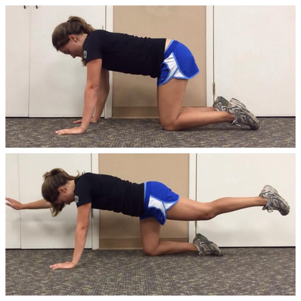 Quadruped Exercise