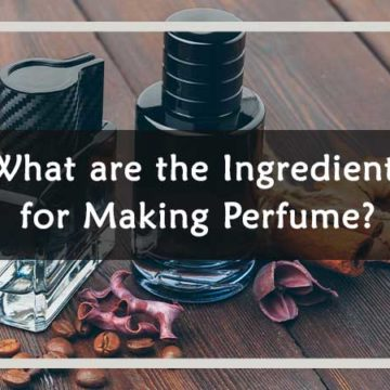"""In this article, we will describe """"What are the Ingredients for making perfume?"""". Stay with us and enjoy this informative article."""
