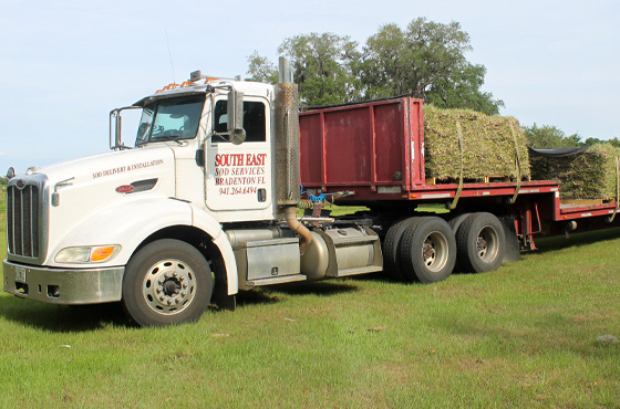 southeast-sod-delivery