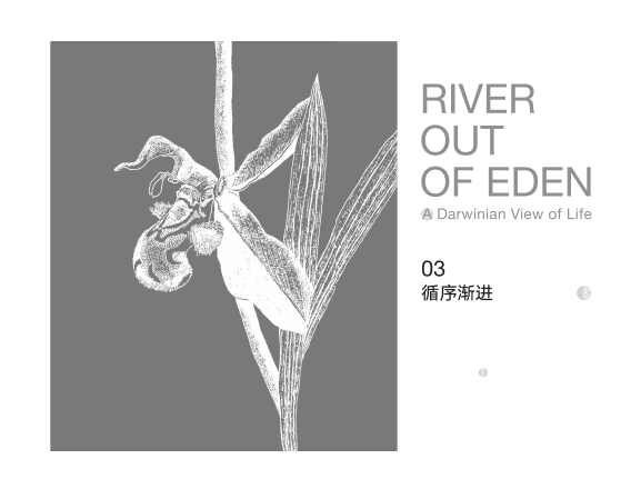 river out of eden-03
